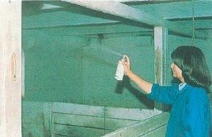 Bekämpfung von Stubenfliege in Stall med Aerosol