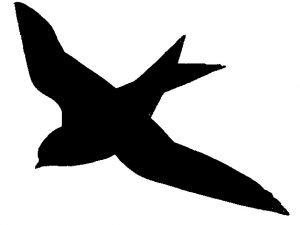 Schattenriss von Mehlschwalbe