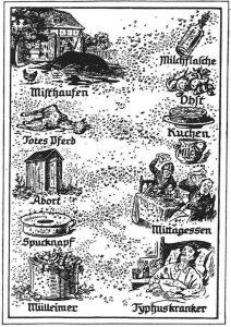 Altes Flugblatt mit Information über Bekämpfung von Fliegen