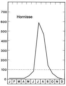 Saison der Hornisse