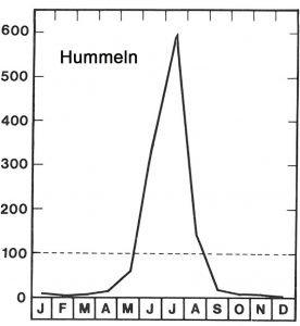 Saison der Hummeln