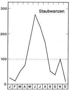 Staubwanzen treten meist im Sommerhalbjahr auf.