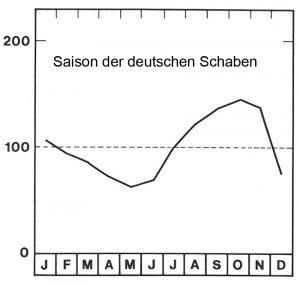 Saison der deutschen Schaben