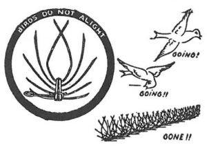 Stacheldraht für Bekämpfung und Schutz gegen Tauben